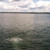 Pardise Lake